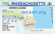 Template Massachusettes drivers license editable photoshop file .psd