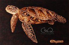 Tartaruga Marina 30x20cm