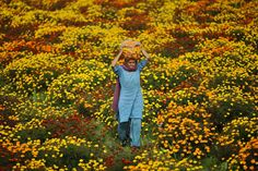 An Indian woman carries marigold flowers on her head on the outskirts of Jammu, India.