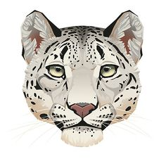 """Snow Leopard Face"" by Paula Lucas. Part of the Feline Portrait series by the artist. Animal Sketches, Animal Drawings, Art Drawings, Snow Leopard Drawing, Cheetah Face, Animal Graphic, Original Paintings For Sale, Graphic Design Print, Animation"