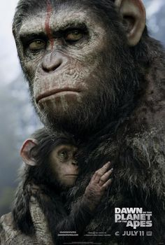planeta maimutelor revolutie dawn of the planet of the apes 2014 poster
