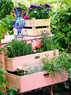 """I had 2 drawers in my garden with flowering plants spilling out.  Made a hand painted rustic sign """"Take a peek at my bloomers""""! -- May need to hold onto this idea.. :)"""