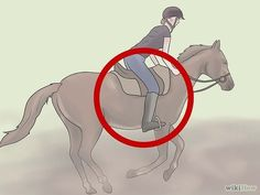 Even though I have galloped many times and I know how to stay on and maintain my balance, this still has a lot of helpful tips.