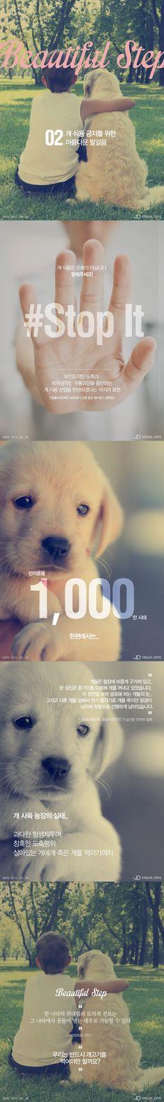 [Beautiful Step] 우리는 반드시 개고기를 먹어야만 할까요? [카드뉴스] #Dog_meat / #Infographic ⓒ 비주얼다이브 무단 복사·전재·재배포 금지