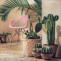 Massive houseplants and tall cactus seem good. A cactus may also be set in a flower pot, where it's rendered […] Decoration Cactus, Decoration Plante, Plantas Indoor, Cactus E Suculentas, Deco Nature, Deco Boheme, The Design Files, Interior Plants, Interior Design