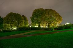 Mine Bilder | stensethphoto Frognerparken at night in rain. Love how the green color come out from the long exposure.