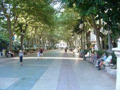 Passeig Born, Palma