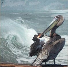 Landscape art quilt with preening pelican against the background of the huge waves before a wintere storm in Hermosa Beach, CA by Barbara Barrick McKie Landscape Art Quilts, Bird Quilt, Animal Quilts, Close Up Portraits, Thread Painting, Fabric Art, Oeuvre D'art, Art Forms, Textile Art