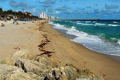 Beach (Deerfield Beach, Florida)