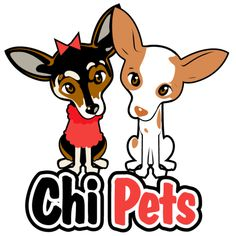 What diseases and illnesses should you look out for as a Chihuahua parent? Below are 10 Chihuahua health problems every Chihuahua owner needs to know about. Chihuahua Facts, Chihuahua Puppies, Baby Puppies, Deer Chihuahua, Chihuahuas For Adoption, Pet Adoption, Pet Dogs, Pets, Doggies
