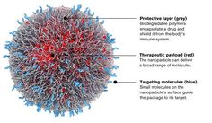 Programmable particle: Bind's drug-delivery nanoparticle (artist's rendering).   Model & image by Digizyme, Inc.