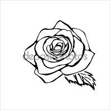 Výsledek obrázku pro růže květ kreslená