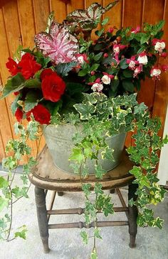40 pretty front door flower pots for a good first impression 29 - Pflanzideen Container Flowers, Flower Planters, Container Plants, Container Gardening, Tall Planters, Succulent Containers, Diy Planters Outdoor, Outdoor Flowers, Planter Ideas