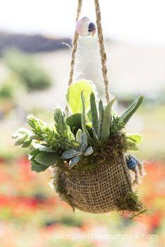 Succulents in a Burlap Bag - www.succulentsandsunshine.com