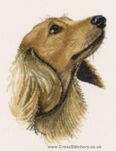 Jasper - Dachshund Portrait Cross Stitch Kit from Heritage Crafts   Love It!! Also in 27 count....