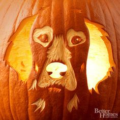 Pumpkin Carving ideas with Better Homes and Gardens Pumpkin Stencils. bhg.com