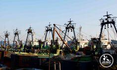 Port de Tongyeong Coree du sud