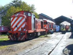 Locomotoras English Electric y Alsthom Sorefame en el viejo y desaparecido depósito de locomotoras de Mar del Plata Norte. - vista 470 veces