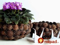 DIY Pinecone Baskets, Table Centerpiece Ideas for Thanksgiving and Christmas Decorating Pine Cone Art, Pine Cone Crafts, Pine Cones, Colorful Centerpieces, Candle Centerpieces, Centerpiece Ideas, Pine Cone Decorations, Christmas Table Decorations, Thanksgiving Table Centerpieces