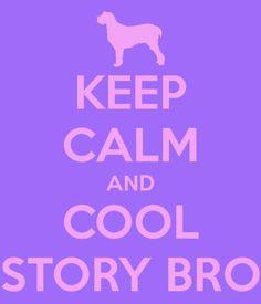 Keep Calm And COOL STORY BRO Keep Calm Quotes, Calm Down, Haha, Posters, Cool Stuff, Sayings, Amazing, Funny, Pura Vida