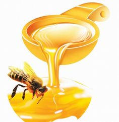 Honey is an amazing food. A tablespoon of this wonder pot ion can give unmatched benefits to your energy levels, skin, and weight loss and wound healing. Honey is blessed with versatile properties an few interesting facts are listed below: Natural News, Natural Skin Care, Natural Health, Natural Foods, Easy Weight Loss, Healthy Weight Loss, Lose Weight, Herbal Remedies, Natural Remedies