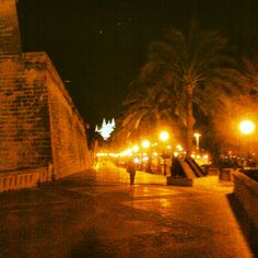 Passeig Sagrera amb detall de Sa Catedral al fons