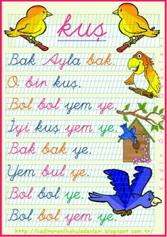 1.+sınıf+okuma+metni+kuş+.png (346×490)