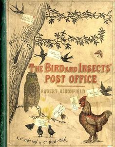 The Bird and Insects' Post Office - gazophylacium