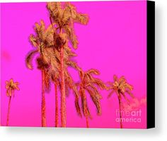 Neon Tropics Canvas Print by Onedayoneimage Photography.  All canvas prints are professionally printed, assembled, and shipped within 3 - 4 business days and delivered ready-to-hang on your wall. Choose from multiple print sizes, border colors, and canvas materials.