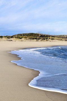 4quarius:  Head of Meadow Beach, Truro, Cape Cod, MA byJohn Greim