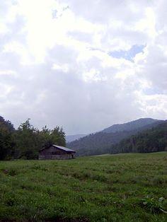 Catalouchee, Great Smokey Mountain National Park, TN.  Photo by Patricia Kessler.