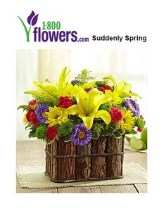 1800flowers Deals – Take Suddenly Spring for $54.99 and use 1800flowers Coupons to Get more discounts at 1800flowers Online.