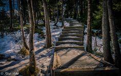 Newfoundland River Trail {Gord Follett}