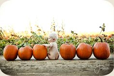 Puts a whole new meaning to calling max my pumpkin butt, I am SO taking this pic… - BABY PICTURES Theme Halloween, Halloween Pictures, Holiday Pictures, Babys 1st Halloween, Girl Halloween, Happy Halloween, Photographie D' Halloween, Halloween Fotografie, Fall Baby Pictures