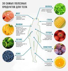 Самые полезные продукты для нашего организма
