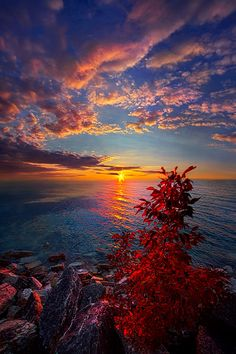Autumn sunrise on the shore of Lake Michigan in Wisconsin. Wisconsin Horizons By Phil Koch. phil-koch.artistwebsites.com