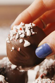 We Can't Stop Eating These Oreo Peppermint Snowballs Best Peppermint Oreo Truffle Recipe - How to Make Peppermint Oreo Truffles Christmas Hot Chocolate, Chocolate Diy, Christmas Candy, Diy Christmas Gifts, Christmas Treats, Christmas Baking, Christmas Cookies, Christmas Truffles, Holiday Gifts