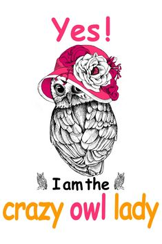 I Am The Crazy Owl Lady T-Shirt, a custom product made just for you by Teespring. Owl Clip Art, Owl Art, Funny Owls, Funny Cute, Owl Food, Crazy Owl, Funny Christmas Movies, Owl Wallpaper, Paper Owls