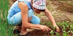 Kjøkkenhage for nybegynnere Grow Your Own, Inspiration, Veggies, Biblical Inspiration, Vegetable Recipes, Vegetables, Inhalation