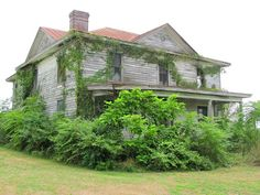 Nature has taken over this old abandoned house in Wylliesburg, Virginia.
