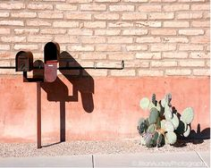 Desert Mailbox / Photography Print