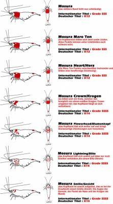 b2ap3_thumbnail_Grade-Guide-Red-Bee-Garnele.jpg