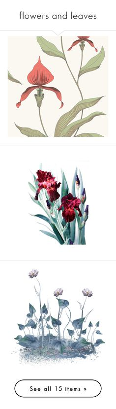 """""""flowers and leaves"""" by svetalukashevich ❤ liked on Polyvore featuring art, home, home decor, wallpaper, red, red flower wallpaper, red home decor, red pattern wallpaper, contemporary home decor and paper wallpaper"""