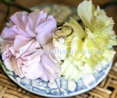 Solitaire Diamond, Diamond Engagement Rings, Tableware, Dinnerware, Dishes, Engagement Rings, Diamond Engagement Ring