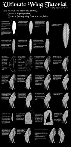 Wing Tutorial by Thy-Darkest-Hour on deviantART - How To Draw , Reference