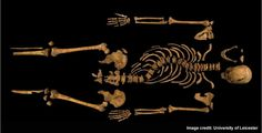 It's official: the human remains found under a parking lot in Leicester, England, belong to Richard III. That's the word from University of Leicester archaeologists, who on Feb. 4 said that DNA evidence, radiocarbon dating, and archaeological evidence all confirm that the battle-scarred bones belonged to the English king, who was killed in battle in 1485.