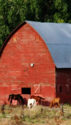1000 Images About Barn Love Go Red On Pinterest Red