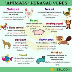 Easy Ways to Learn Phrasal Verbs in English - ESLBuzz Learning English English Sentences, English Verbs, English Vocabulary Words, English Phrases, English Writing, English Study, English Lessons, English Grammar, Learn English