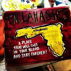 I miss Tallahassee