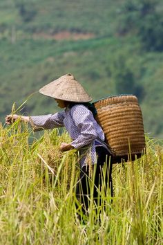 Sapa Mu Cang Chai Packages - This trip aims to show you the most beautiful route in North Vietnam: a journey from Sapa to Mu Cang Chai then finish in Hanoi. Cultures Du Monde, World Cultures, We Are The World, People Of The World, Laos, Asia Continent, Beautiful Vietnam, Vietnam Voyage, Art Asiatique